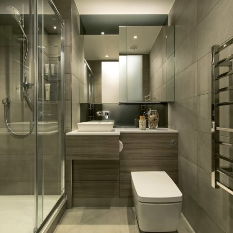 Luxury apartment bathroom pod with shower